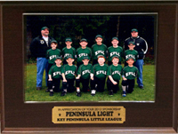 200w-2012-Little-League-Key-Penn-Green