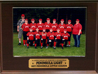 200w-2012-Little-League-Red