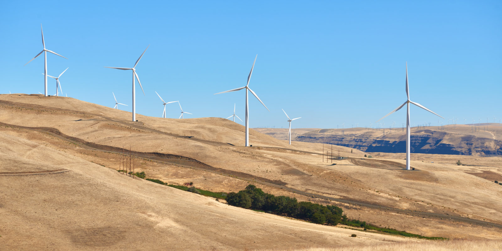Wind power farm in Columbia River Gorge on the Oregon and Washington border.