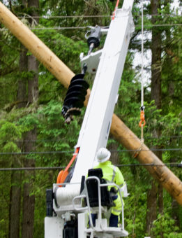 linemen working on power poles