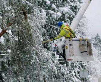 linemen in bucket truck working on poles near trees