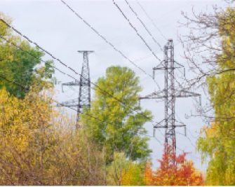 Photo of power lines near trees during fall
