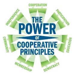 The Power of Cooperative Principles