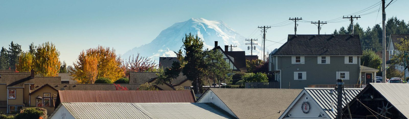 mountain behind trees roofs of houses